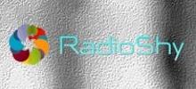 Radio Shy