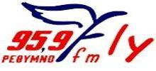 Radio Fly