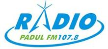 Radio Padul