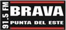 FM Brava