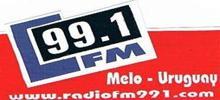 Radio Fm 99.1