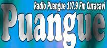 Radio Puangue
