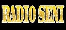 Radio Seni Serbia