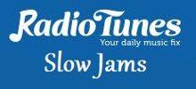 Radio Tunes Slow Jams