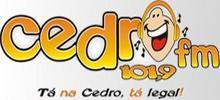 Cedro FM 101.9