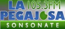 La Pegajosa FM