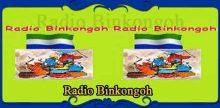 Radio Binkongoh