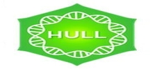 Positively Hull