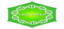 Positively Leicester