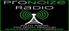 Pro Noize Radio