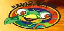 Radio Garin
