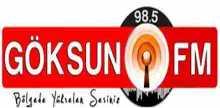 Goksun FM