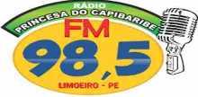 Radio Princesa do Capibaribe