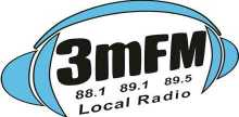 3M FM