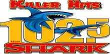 102.5 The Shark