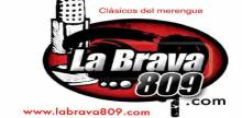 """<span lang =""""es"""">La Brava 809</span>"""