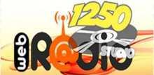 Studio 1250