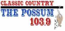 103.9 The Possum