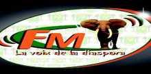 La Voix De La Diaspora