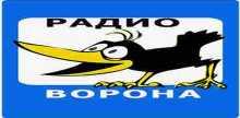 Radio Vorona