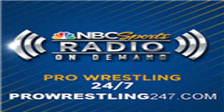 Pro Wrestling 247