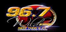 Wild FM 106.3