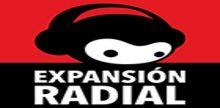Expansion Radial Radio