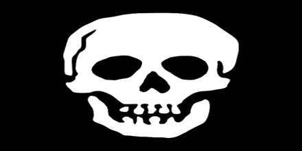 A Pirates Life