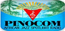 African Jazz Spotlight Radio