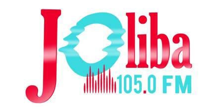 Joliba105.0 FM