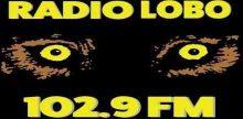 Radio Lobo