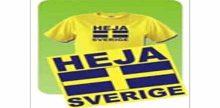 Sverigekanalen Direkt