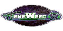 Teneweed FM