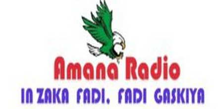 Amana Radio