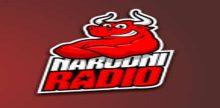 "<span lang =""bs"">Narodni Radio Zenica</span>"