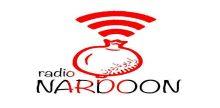 Radio Nardoon