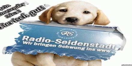 Radio Seidenstadt