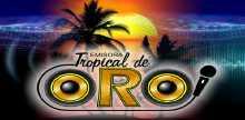 "<span lang =""es"">Emisora Tropical de Oro</span>"