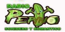 Pepino Sonidero Y Romantico Radio