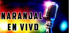 """<span lang =""""es"""">Naranjal En Vivo</span>"""