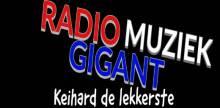 Radio Muziek Gigant