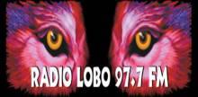 Radio Lobo 97.7 FM