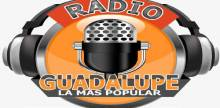 Radio Guadalupe HD llallagua Potosí