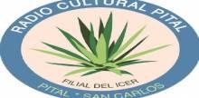 Cultural De Pital