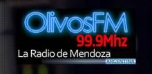 Olivos FM