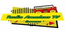 Radio Amadeus Tv