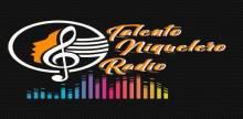 "<span lang =""es"">Talento Niquelero Radio</span>"