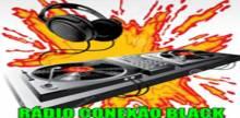 Rádio Conexao Black